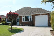 Detached Bungalow for sale in Firle Road...