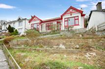 Bungalow in The Coombes, Polperro...