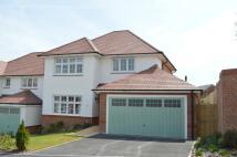 new home in Primrose Drive...