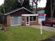 3 bed Detached Bungalow in Hampshire Drive...