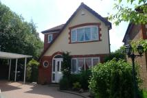 Detached property in Coed Camlas, New Inn, NP4