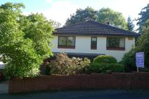 4 bed Detached property for sale in Brooklea, Caerleon...