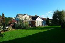 4 bedroom Detached property in BRECHFA CLOSE, Ponthir...
