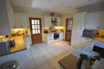 Detached Bungalow in Ashford Close South...