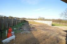 Cufaude Lane Land