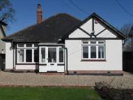 Bungalow in Heatherton Park Road...