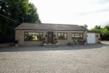 2 bedroom Detached Bungalow for sale in New Barn Road, Hextable...