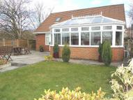 Detached Bungalow in Foxglove Lane...