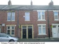 Laurel Street Flat to rent