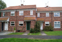 2 bed Terraced house to rent in MINSTER AVENUE, Beverley...