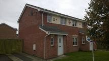 2 bed semi detached home in Berryhill Crescent...
