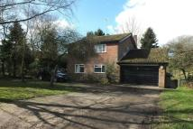 property to rent in Balsham, Cambridge, CB21