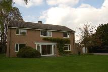 Fowlmere house to rent