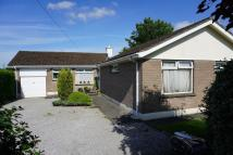 4 bed Detached Bungalow in Tiny Meadows...