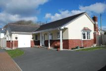 Detached Bungalow in South Petherwin...