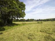 4 bed Equestrian Facility home for sale in Polson, Launceston