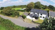 Barn Conversion for sale in Holsworthy