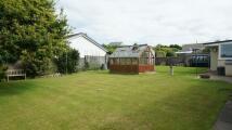 Detached Bungalow for sale in St Cleer, Liskeard