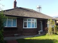 Detached Bungalow to rent in Witham Road...