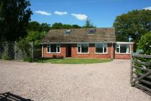 4 bed Detached Bungalow in Ockeridge, Wichenford...