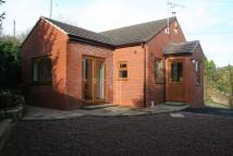 SPRING BANK Bungalow to rent