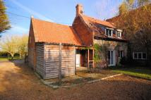 Cottage to rent in Sharrington