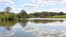 Brick Farm Lakes new development for sale