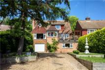 5 bedroom Detached home in Langham Road...