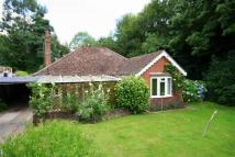 Detached property to rent in Church Hill, Sedlescombe