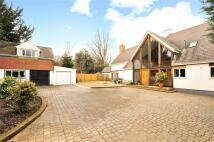7 bedroom Detached property to rent in Free Heath, Wadhurst