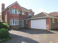 Hailsham house for sale