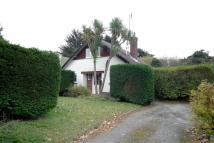 Detached property to rent in Hoburne Lane, Highcliffe...