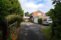 Ashley Detached house to rent