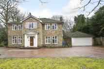 4 bed Detached house to rent in Sunningdale, Berkshire
