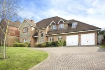 6 bedroom property to rent in Sunningdale, Berkshire