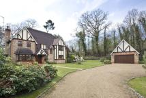 4 bed house in Virginia Water, Surrey
