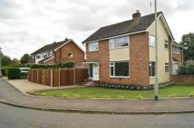 3 bedroom semi detached house to rent in FRIARY MEADOW...