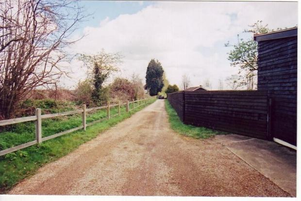 Field of 36.2 Acres