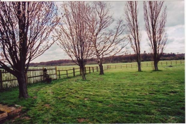 Field of 14.85 Acres