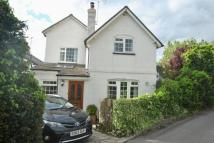 3 bed semi detached house in Hollybush Lane...