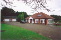 4 bed Detached Bungalow to rent in ROCK HILL, ORPINGTON