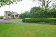 Detached Bungalow for sale in Berrys Green Road...