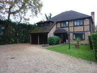 Detached home to rent in PeterHouse...