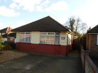 Semi-Detached Bungalow to rent in Basing Drive, Bexley, DA5