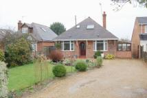 Detached Bungalow in Westholme Road...