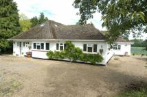 Detached property in Marden