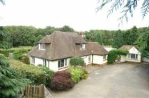 Detached property for sale in Felbridge, East Grinstead