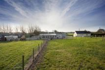 Equestrian Facility house for sale in Eastry, Kent