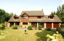 5 bed Equestrian Facility house in St Mary Hoo, Rochester
