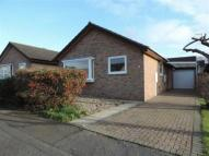 Bungalow for sale in Swanmore Road, ...